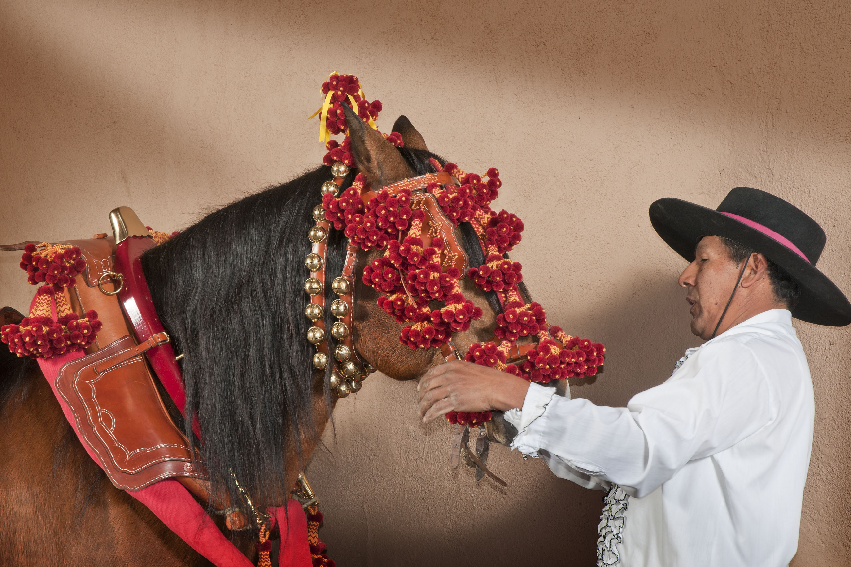 man dressing a horse in red bells and flowers