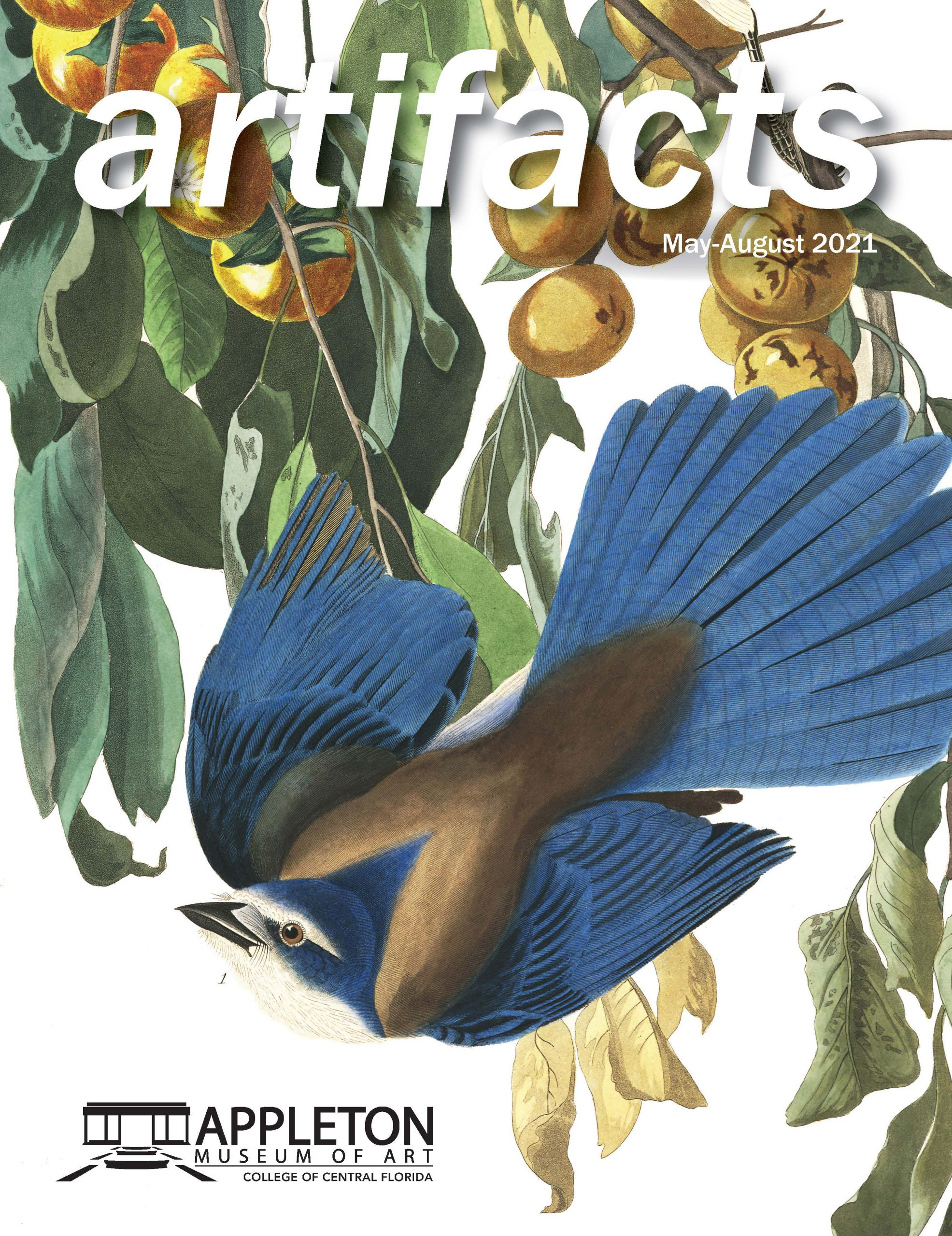 May-Aug Artifacts Cover